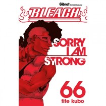 Bleach Tome 66 : Sorry I am...